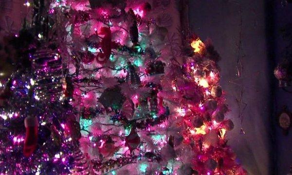 86 Christmas Trees, 52K Lights Inside House