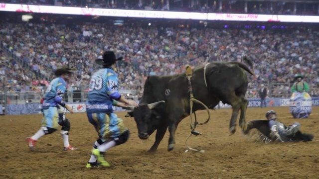 RodeoHouston through the eyes of bull fighter