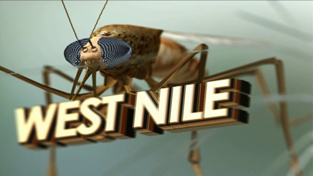 Six confirmed West Nile cases in Montgomery County